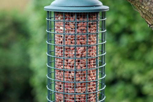 15% OFF Any Single Item at Backyard Birds