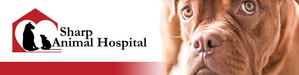 Sharp Animal Hospital & Dental Care in Fraser, MI banner