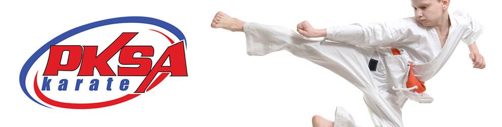 PKSA Karate in Rochester Hills, MI banner